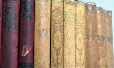 Queridos Livros